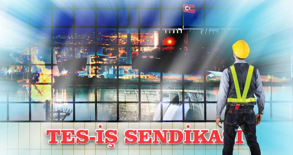TES-İŞ İŞKOLU ÖRGÜTLENME ORANINDA BİRİNCİ